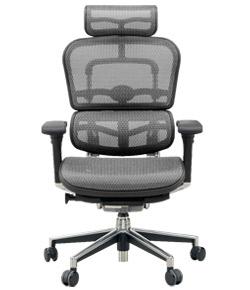 Ergohuman エルゴヒューマンチェア ベーシック イス 椅子 エラストメリックメッシュ ハイタイプ グレー