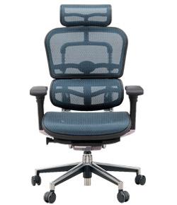 Ergohuman エルゴヒューマンチェア ベーシック イス 椅子 エラストメリックメッシュ ハイタイプ ブルー