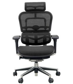 Ergohuman エルゴヒューマンチェア ベーシック イス 椅子 ファブリックメッシュ ハイタイプ ブラック