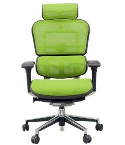 Ergohuman エルゴヒューマンチェア ベーシック イス 椅子 ファブリックメッシュ ハイタイプ グリーン