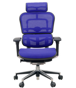 Ergohuman エルゴヒューマンチェア ベーシック イス 椅子 ファブリックメッシュ ハイタイプ ブルー