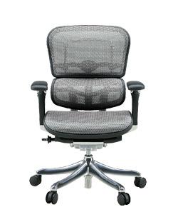 Ergohuman エルゴヒューマンチェア プロ イス 椅子 エラストメリックメッシュ ロータイプ ホワイト