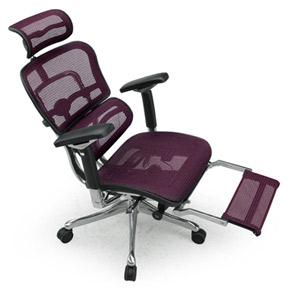 Ergohuman エルゴヒューマンチェア プロ オットマン内蔵 イス 椅子 エラストメリックメッシュ ハイタイプ レッド