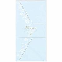 N B RS envelope blue 2146902 five sets 公式サイト 5セット 307円×5セット エヌビー社 ブルー 美品 エヌビー RS封筒 4905260632199