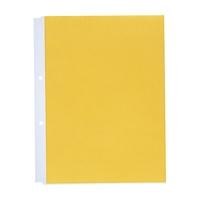 LIHITLAB クリヤーポケット N-2101 A4S 人気の製品 全店販売中 10枚 黄 2穴 120セット