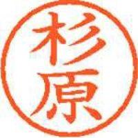 シヤチハタ ネーム6既製 XL-6 1324 杉原(10セット)