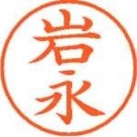 シヤチハタ ネーム9既製 XL-9 0321 岩永(10セット)