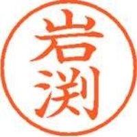 シヤチハタ ネーム9既製 XL-9 0326 岩渕(10セット)