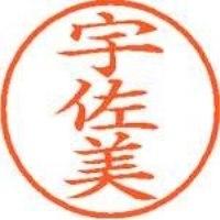 シヤチハタ ネーム9既製 XL-9 0348 宇佐美(10セット)