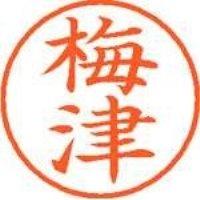シヤチハタ ネーム9既製 XL-9 0396 梅津(10セット)