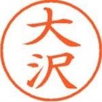 シヤチハタ ネーム9既製 XL-9 0480 大沢(10セット)