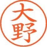 シヤチハタ ネーム9既製 XL-9 0513 大野(10セット)