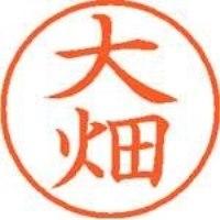 シヤチハタ ネーム9既製 XL-9 0517 大畑(10セット)
