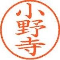 シヤチハタ ネーム9既製 XL-9 0596 小野寺(10セット)
