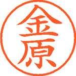 シヤチハタ ネーム9 XL-9 0750 金原(10セット)