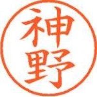 シヤチハタ ネーム9既製 XL-9 0768 神野(10セット)