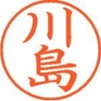 シヤチハタ ネーム9既製 XL-9 0814 川島(10セット)