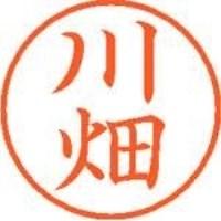 シヤチハタ ネーム9既製 XL-9 0829 川畑(10セット)