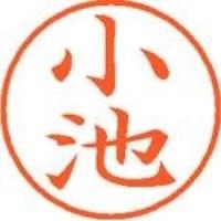 シヤチハタ ネーム9既製 XL-9 1034 小池(10セット)