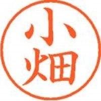 シヤチハタ ネーム9既製 XL-9 1062 小畑(10セット)