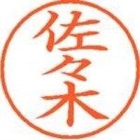 シヤチハタ ネーム9既製 XL-9 1195 佐々木(10セット)