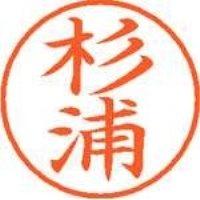 シヤチハタ ネーム9既製 XL-9 1317 杉浦(10セット)
