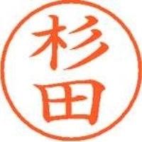 シヤチハタ ネーム9既製 XL-9 1321 杉田(10セット)