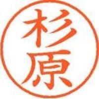 シヤチハタ ネーム9既製 XL-9 1324 杉原(10セット)