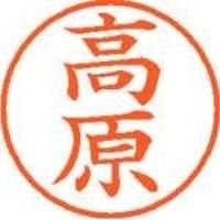 シヤチハタ ネーム9既製 XL-9 1377 高原(10セット)