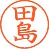 シヤチハタ ネーム9既製 XL-9 1390 田島(10セット)