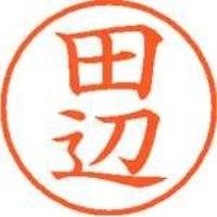 シヤチハタ ネーム9既製 XL-9 1393 田辺(10セット)