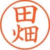 シヤチハタ ネーム9既製 XL-9 1394 田畑(10セット)