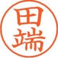 シヤチハタ ネーム9既製 XL-9 1395 田端(10セット)