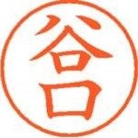 シヤチハタ ネーム9既製 XL-9 1434 谷口(10セット)