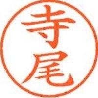 シヤチハタ ネーム9既製 XL-9 1484 寺尾(10セット)