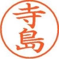 シヤチハタ ネーム9既製 XL-9 1487 寺島(10セット)