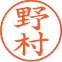 シヤチハタ ネーム9既製 XL-9 1619 野村(10セット)