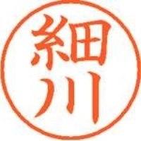 シヤチハタ ネーム9既製 XL-9 1782 細川(10セット)