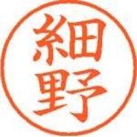 シヤチハタ ネーム9既製 XL-9 1784 細野(10セット)