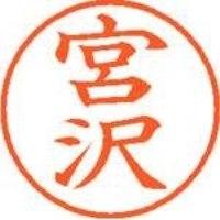 シヤチハタ ネーム9既製 XL-9 1877 宮沢(10セット)