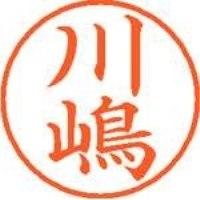 シヤチハタ ネーム9既製 XL-9 4022 ◆川嶋(10セット)