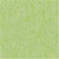 北越製紙 やよいカラー 4ツ切 たけ 100枚(10セット)