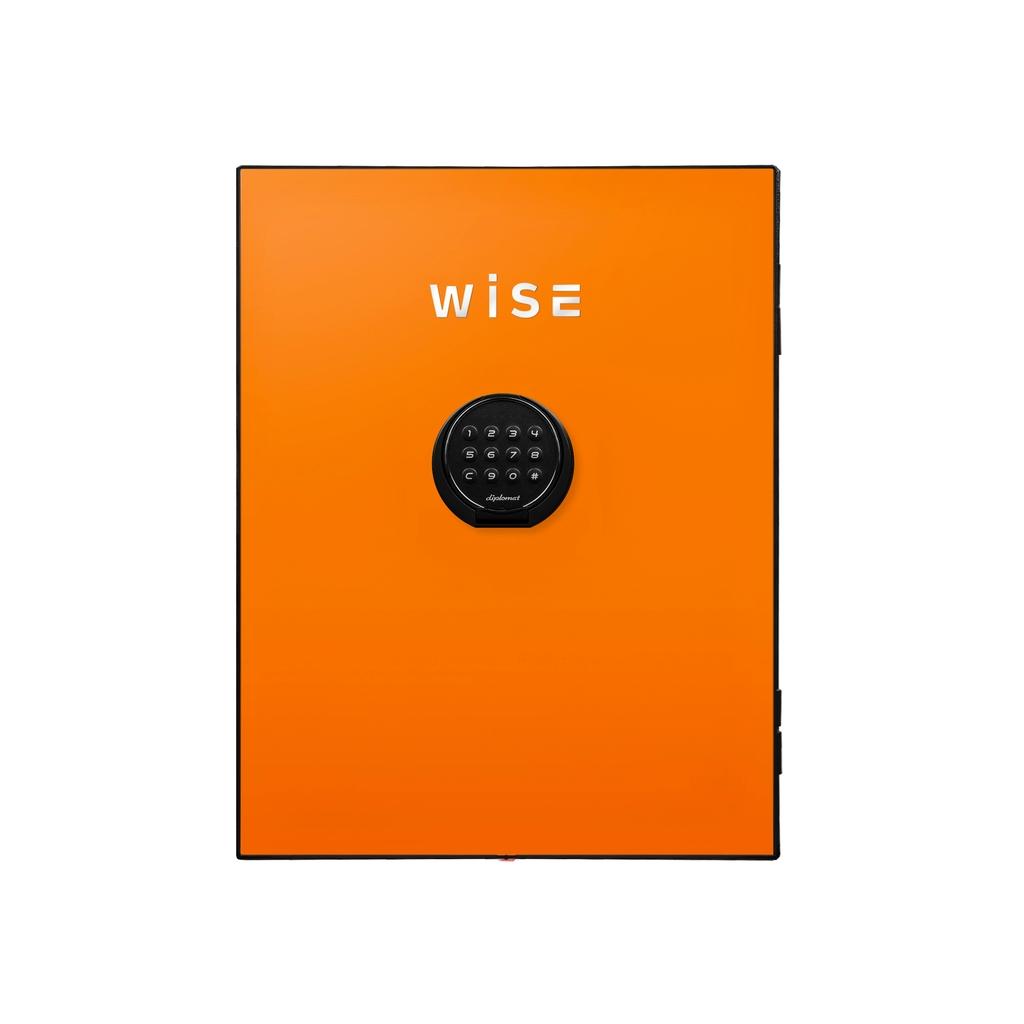 デジタルテンキー式 デザイン金庫用フェイスパネル 容量5Kg オレンジ R-WS500FPO