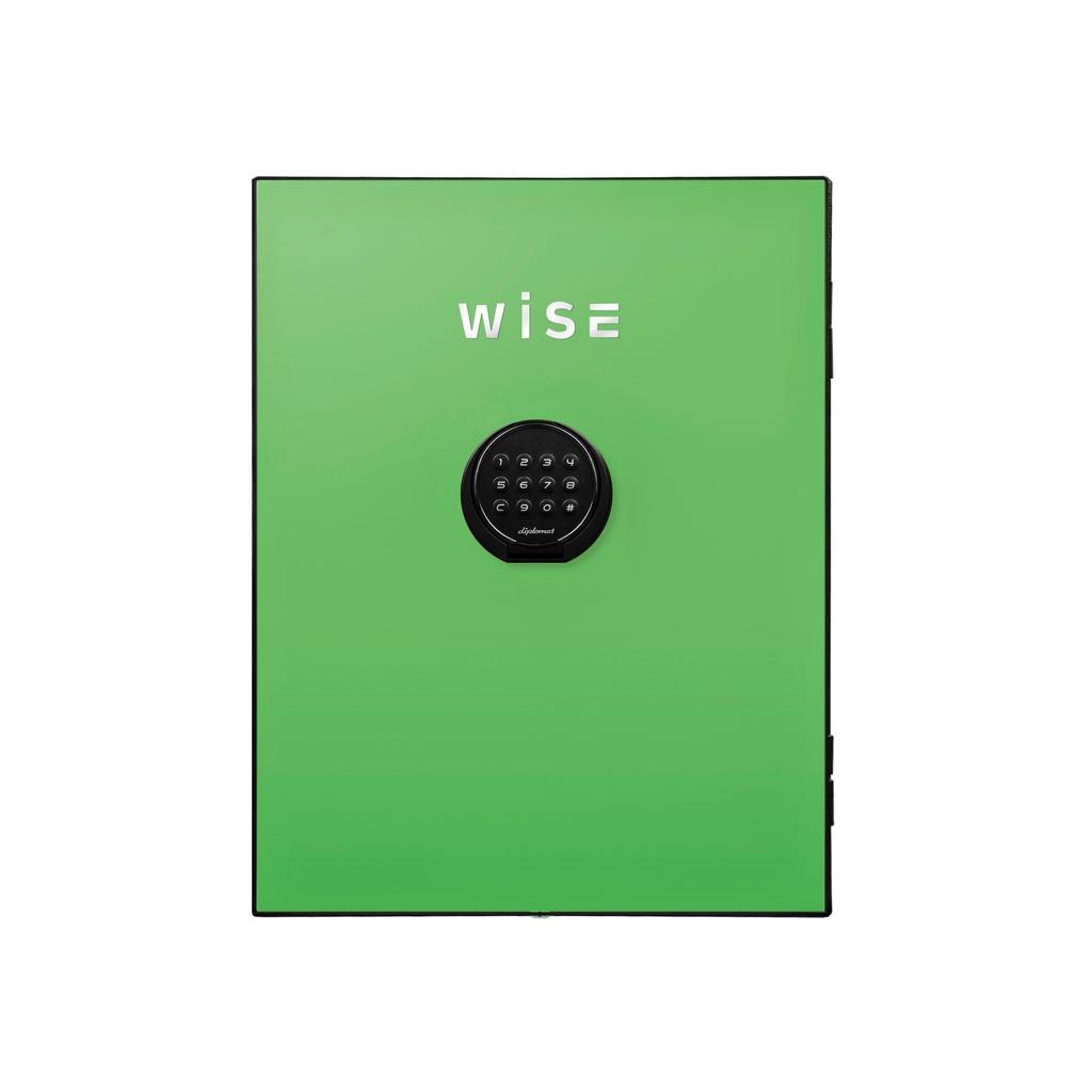 デジタルテンキー式 デザイン金庫用フェイスパネル 容量5Kg グリーン R-WS500FPG