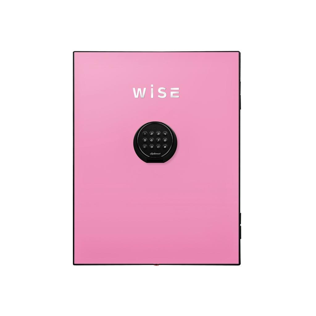 【法人様限定】 デジタルテンキー式 デザイン金庫用フェイスパネル 容量5Kg ピンク R-WS500FPP