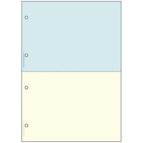 【個別送料】【J-277124】【ヒサゴ】プリンター帳票 BP2011WZ A4 2色/2面2400枚【コピー用紙】