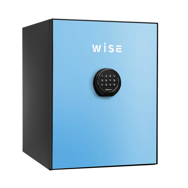 【開梱設置無料】【送料無料】ディプロマット WISEプレミアムセーフ(ライトブルー) WS500ALB