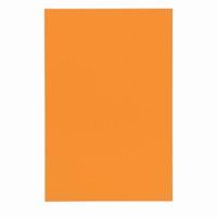 <title>名札などに識別しやすいカラーマグネットシート 早割クーポン マグネットシートワイドツヤ有 橙 B210J-O ジョインテックス</title>