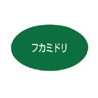 ビーポップ専用詰替インクリボン 詰替インクリボン 深緑 SL-TRフカミドリ【マックス】