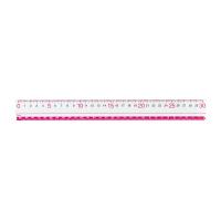 直線定規 見やすい定規 30cm ピンク 厚さ2mm メタクリル製 AJR252P【レイメイ藤井】